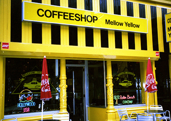 mellowyellow