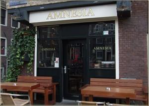 Amneisa